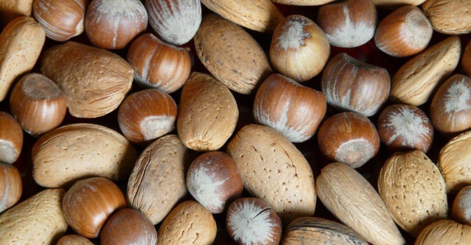 Waarom magnesium zo belangrijk voor je is
